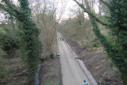 The track towards Telford Town Park